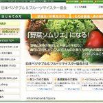 【制作実績】「野菜ソムリエ」の認定機関・日本ベジタブル&フルーツマイスター協会 Webサイト